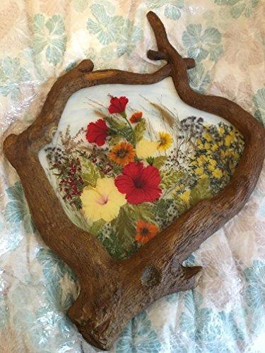 Making Pressed Flower Pictures By Margaret Kennedy Scott