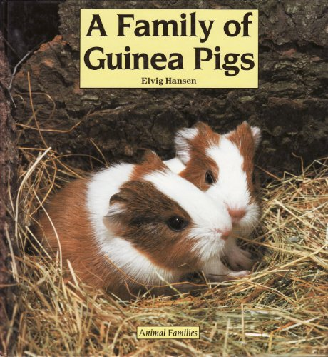 A Family of Guinea Pigs By Elvig Hansen