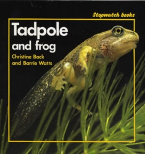 Tadpole and Frog By Christine Back