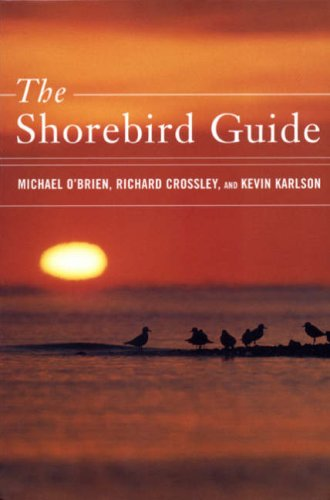The Shorebird Guide By Kevin T. Karlson