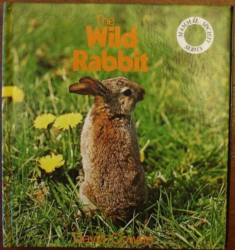 Wild Rabbit By David Cowan