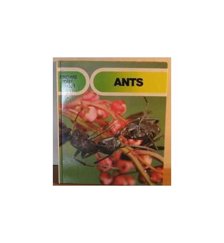 Finding-Out-About-Ants-0713711531-The-Cheap-Fast-Free-Post