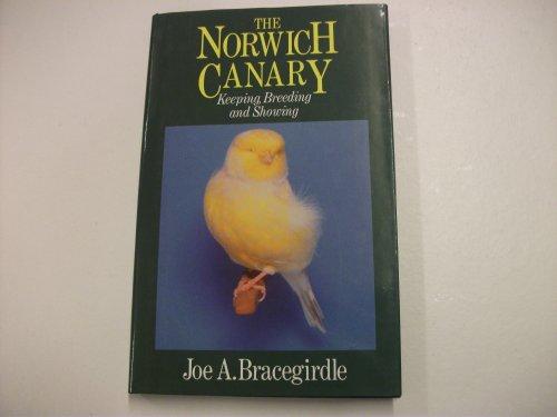 The Norwich Canary by Joe Bracegirdle