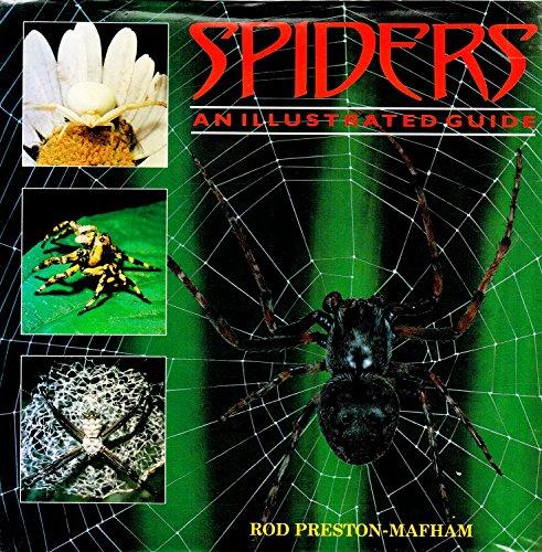 Spiders and Scorpions By Rod Preston-Mafham