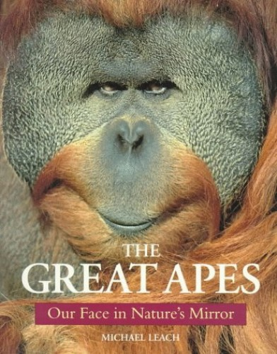 The Great Apes By Michael Leach