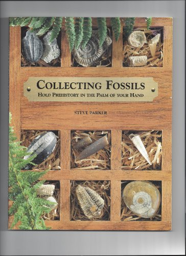 Collecting Fossils By Steve Parker