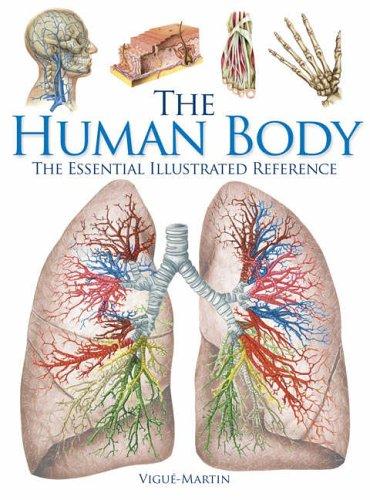 The Human Body By Jordi Vigue