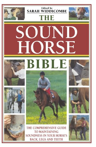 The Sound Horse Bible By Sarah Widdicombe