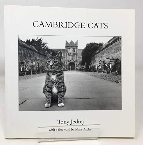 Cambridge Cats By Tony Jedrej
