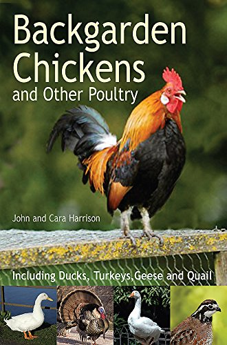 Backgarden Chickens and Other Poultry By John Harrison