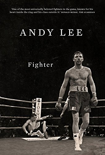 Fighter By Andy Lee
