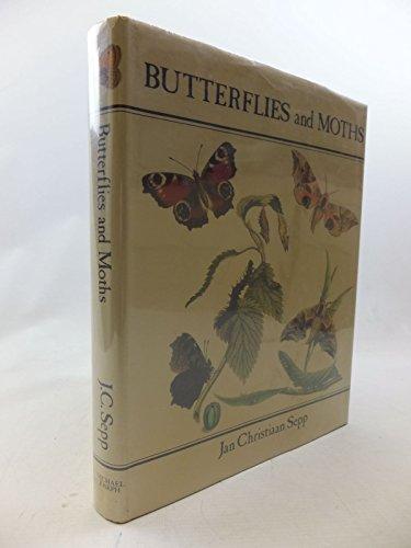 Butterflies and Moths By Stuart McNeill