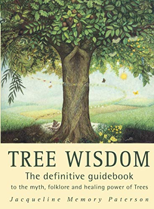 Tree Wisdom By Jacqueline Memory Paterson