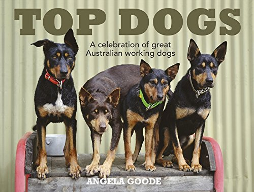 Top Dogs: A Celebration of Great Australian Working Dogs by Angela Goode