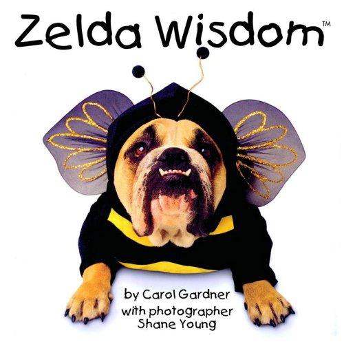 Zelda Wisdom By Shane Young