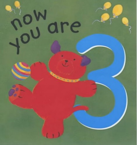Now You are 3 By Lois Rock