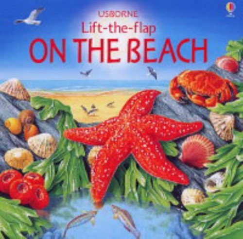 On the Beach (Lift the Flap Learners) by Heather Amery