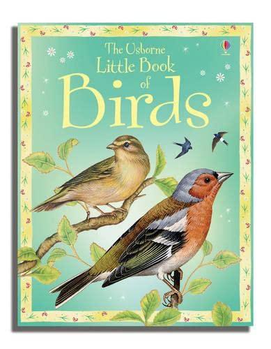 Little Book of Birds (Usborne Little Books) By Sarah Khan