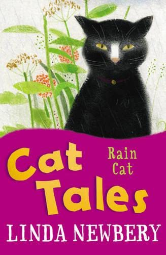 Rain Cat By Linda Newbery