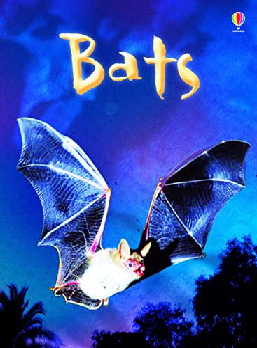 Bats (Usborne Beginners) (Beginners Series) By Megan Cullis