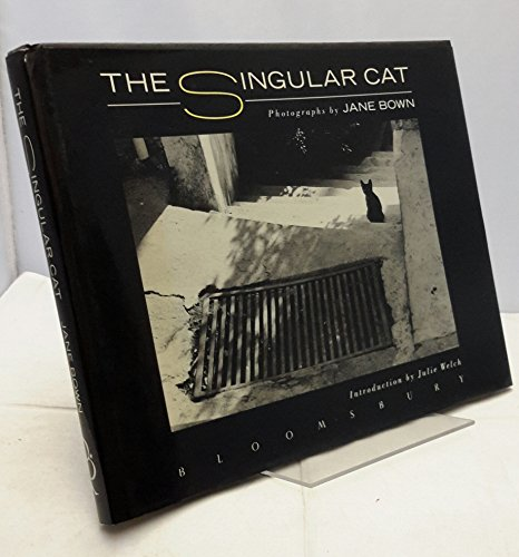 The Singular Cat By Jane Bown