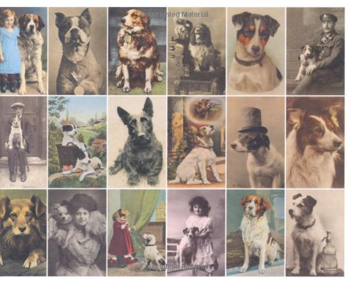 Postcard Dogs by Libby Hall