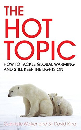 The Hot Topic: How to Tackle Global Warming and Still Keep the Lights on by David King