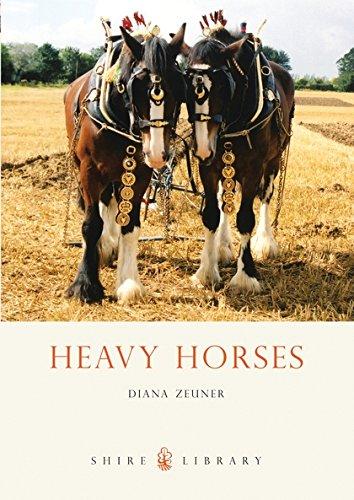 Heavy Horses By Diana Zeuner