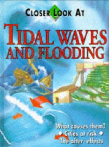 Tidal Waves and Flood By Michael Flaherty