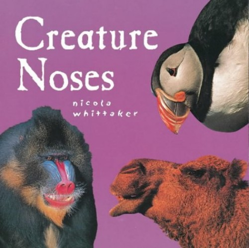 Creature Noses By Nicola Whittaker