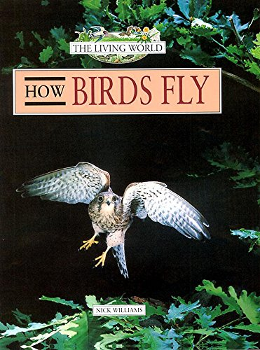 How Birds Fly By Nick Williams