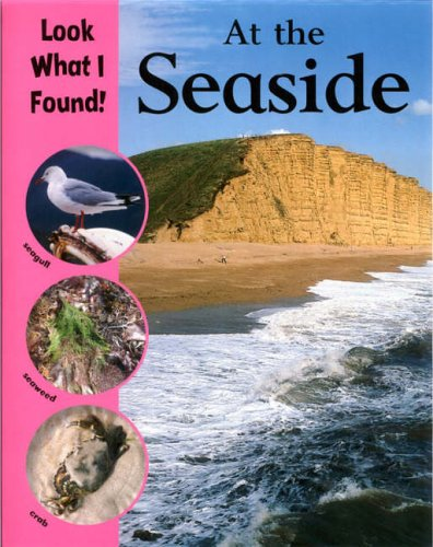 At The Seaside (Look What I Found!) By Paul Humphrey