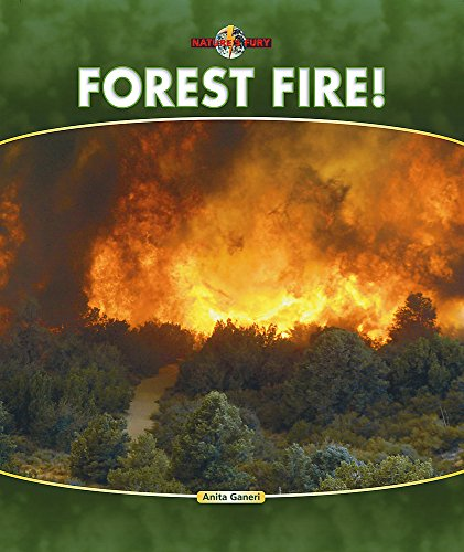 Nature's Fury: Forest Fire By Anita Ganeri