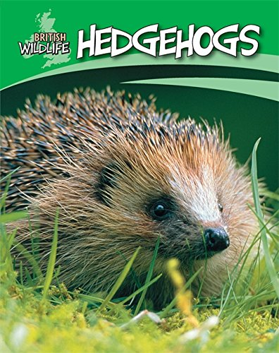 British Wildlife: Hedgehogs By Sally Morgan