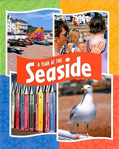 A Year at the Seaside By Sally Hewitt
