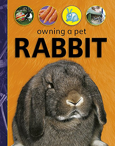 Owning A Pet: Rabbit By David Glover