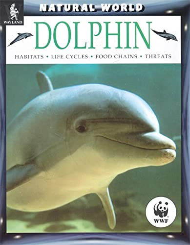 Dolphin By Nic Davies