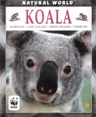 Natural World: Koala By Michael Leach