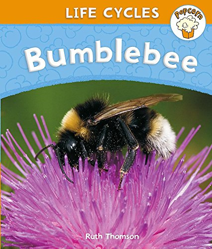 Popcorn: Life Cycles: Bumblebee By Ruth Thomson