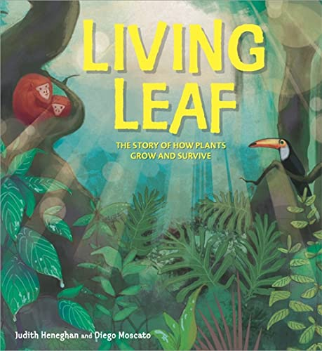 Plant Life: Living Leaf By Judith Heneghan