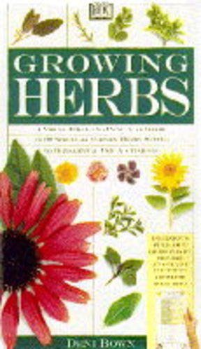 Growing Herbs By Deni Bown