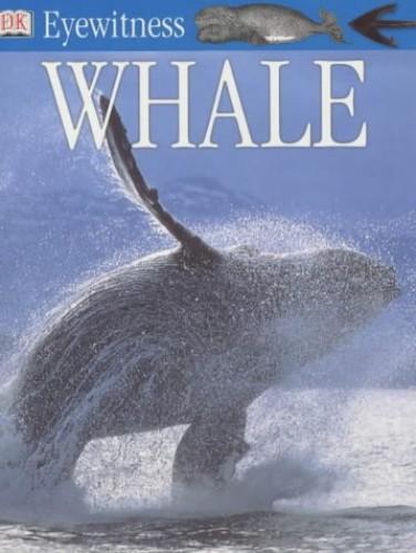 Whale (Eyewitness) by Vassili Papastavrou