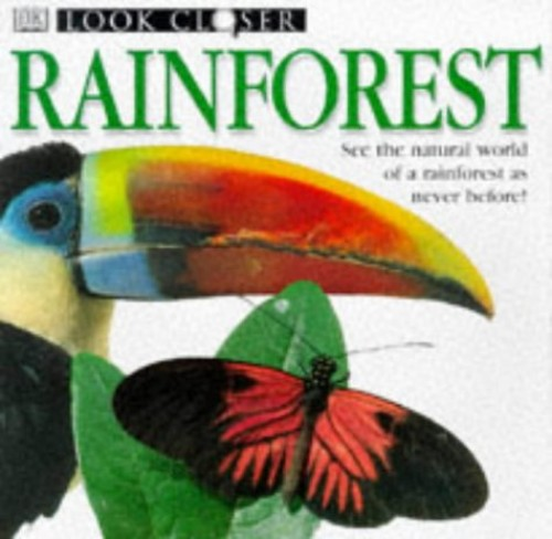 Rainforest By Barbara Taylor