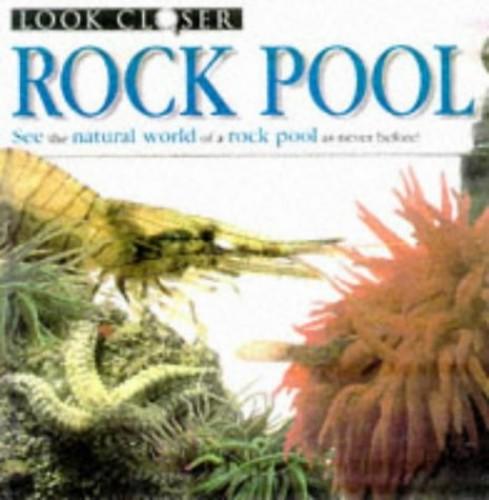 Rock Pool By Christiane Gunzi