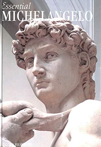 Michelangelo By Kirsten Bradbury