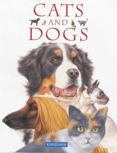 Cats and Dogs By Amanda Oneil