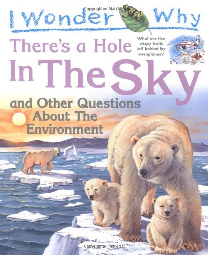 I Wonder Why There's a Hole in the Sky By Sean Callery