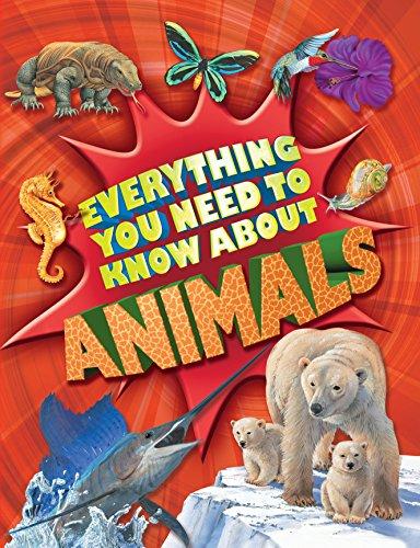 Everything You Need To Know: Animals By Nicola Davies