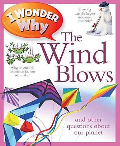 I Wonder Why The Wind Blows von Anita Ganeri