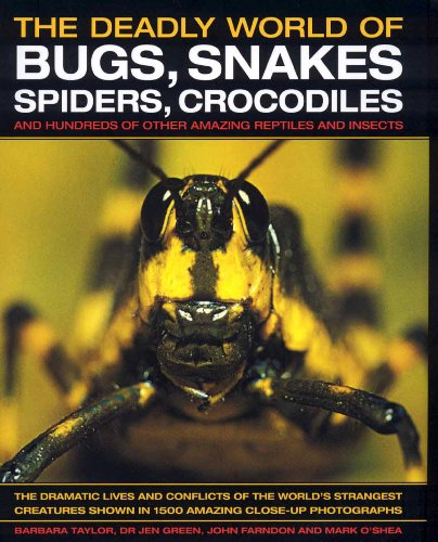 The Deadly World of Bugs, Snakes, Spiders, Crocodiles and Hundreds of Other Amazing Reptiles and Insects von Barbara Taylor